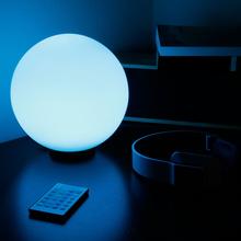 New 300mm LED Wall lamp Holiday Ball Light(China (Mainland))