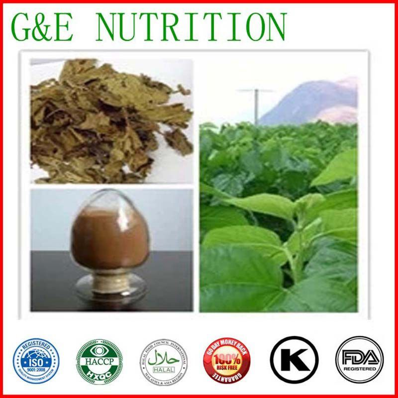 Mulberry extract/Mulberry extract powder/Mulberry leaf extracts 800g