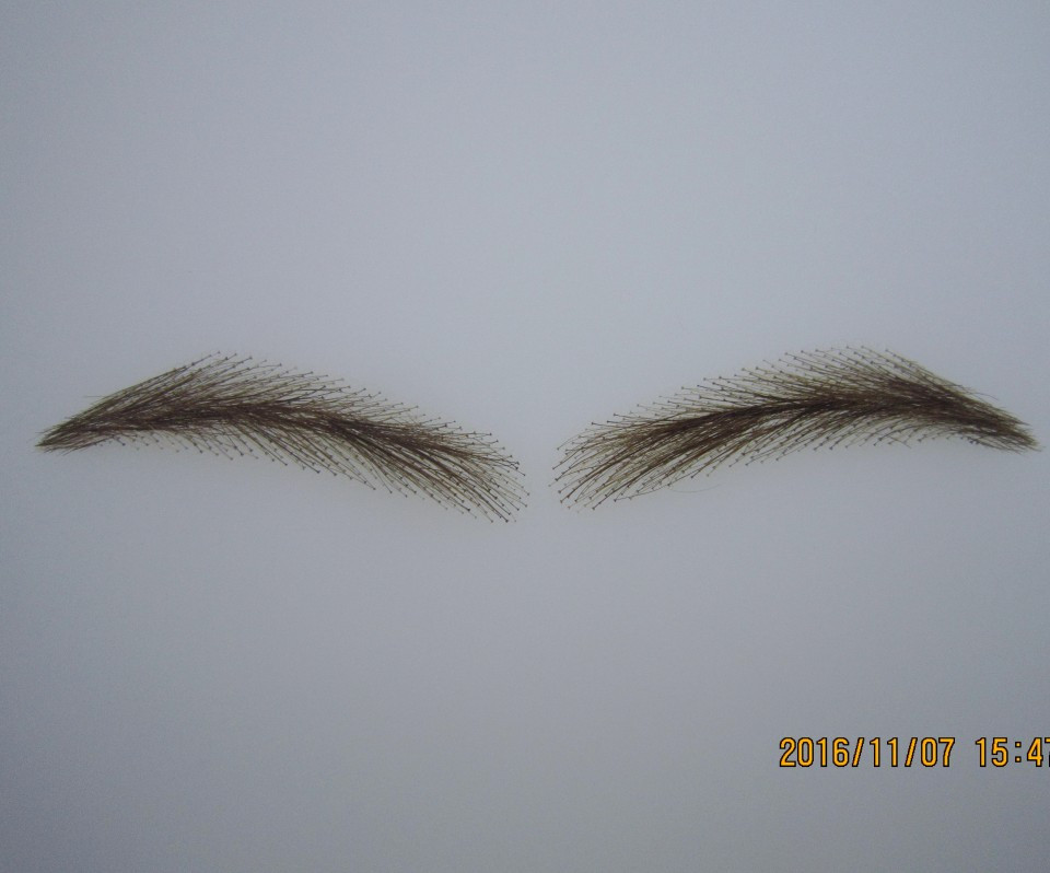 Eyebrow 2016 Full Size Long-lasting New Real Easy To Wear Sobrancelha Sale Lace Brow For Young Man ,