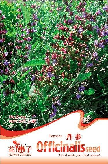 Карликовое дерево Flower goddness 3 Danshen * 30 E003 карликовое дерево flower goddess 3 nutate 50 a101