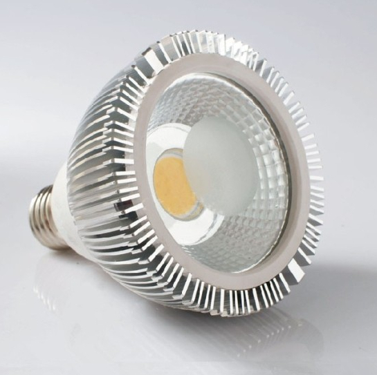 1000lm 10 watts LED Dimmable COB Par30 E27 E26 LED Spot Light Bulb Lamp(China (Mainland))