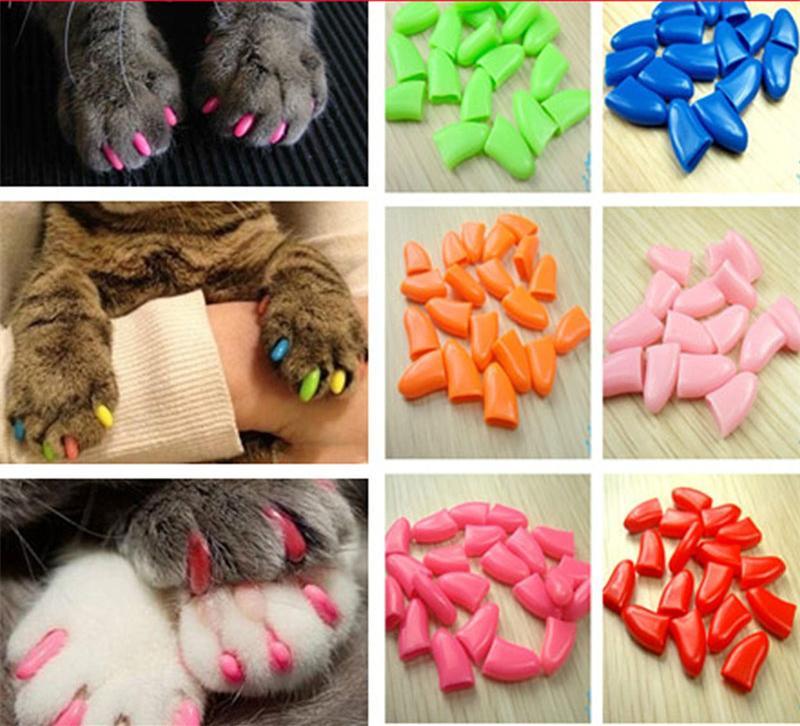 Товары для груминга кошек 2015 20 товары для груминга собак smith chu