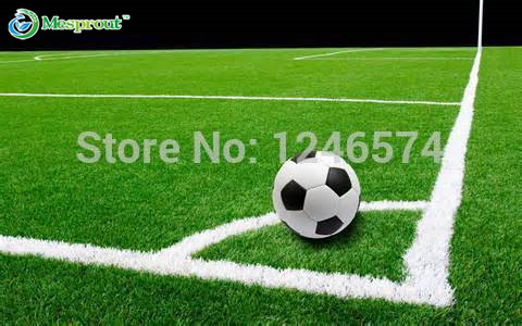 Lawn Turf Seed 500pcs Grass Seeds Fresh Green Soft Runner Turfgrass for home park soccer golf place free shipping(China (Mainland))