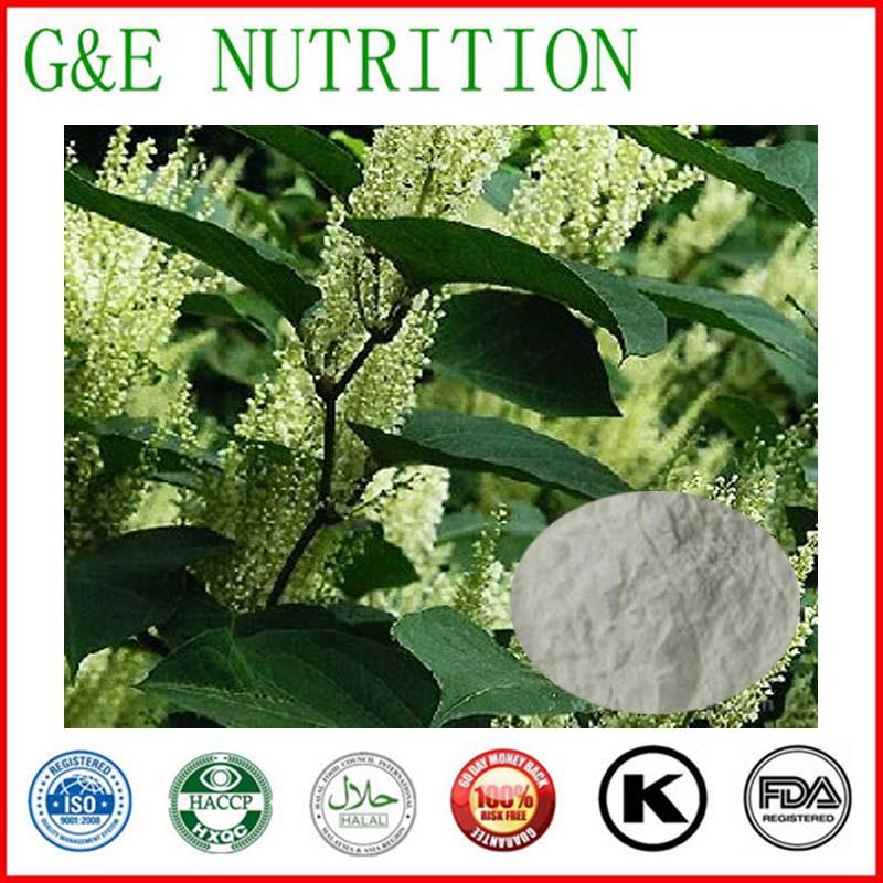 100% natural Polygonum cuspidatum root extract resveratrol powder 600g