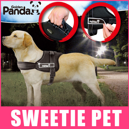 Free Shipping 3 colors Gold panda pet dog collar luxury chest collar for big dogs, dog chain traction rope S,M,L,XL(China (Mainland))