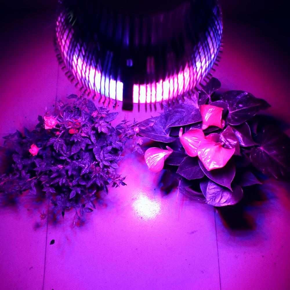 Лампы для роста растений из Китая