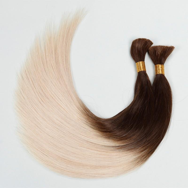 Sleek  Brazilian Maiden Virgin hair Bulk hair Light Colorful Human Hair Ombre Hair Extension 2pcs/lot Aliexpress Color T6/1001