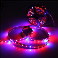 5050 Grow LED bande Flexible bande de lumière 4:1 4 rouge 1 bleu Aquarium serre hydroponique plante qui pousse lampe 60led / M 1 M 2 M 4 M 5 M(China (Mainland))