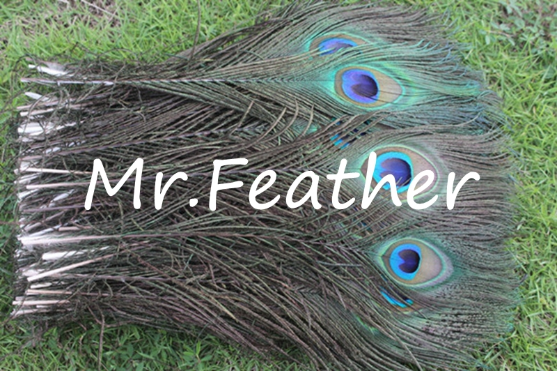 10natural color peacock feathers 30-40cm 12-16 inch Plumes crafts - Mr CKING Store store