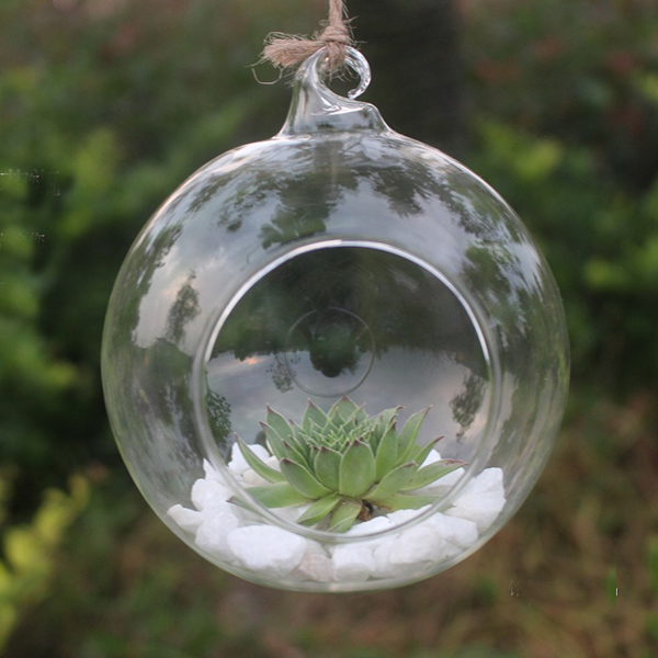 Clear Round Hanging Glass Vase Bottle Terrarium Hydroponic Planter Pot Flower DIY Home Table Garden Decor(China (Mainland))