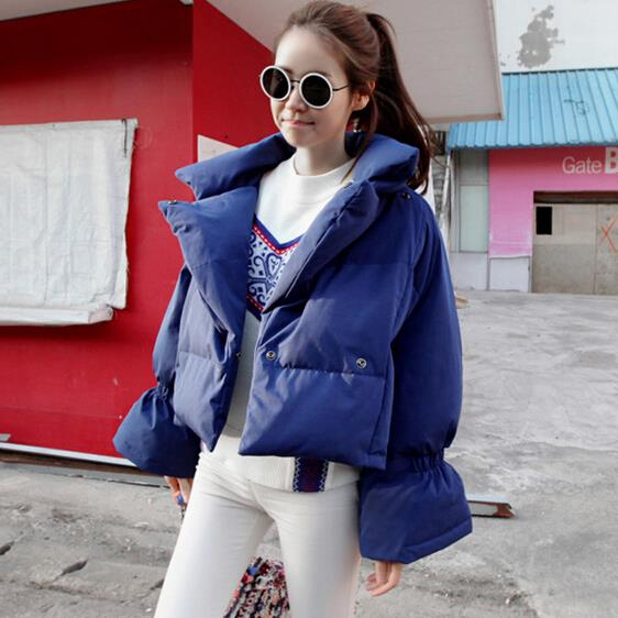 Korean spring winter women female models padded down cotton coat big yards cloak new jacket short fashion slim outwear Одежда и ак�е��уары<br><br><br>Aliexpress