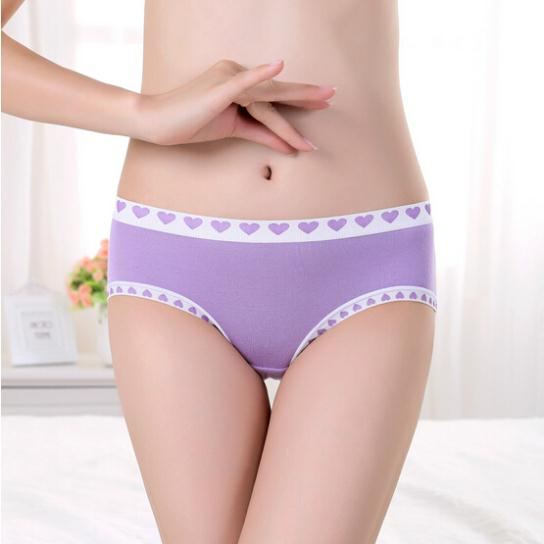NY Young lady girl hot sale Factory sale Menstrual proof Modal Seamless Panty Underwear Women's Briefs Panties(China (Mainland))