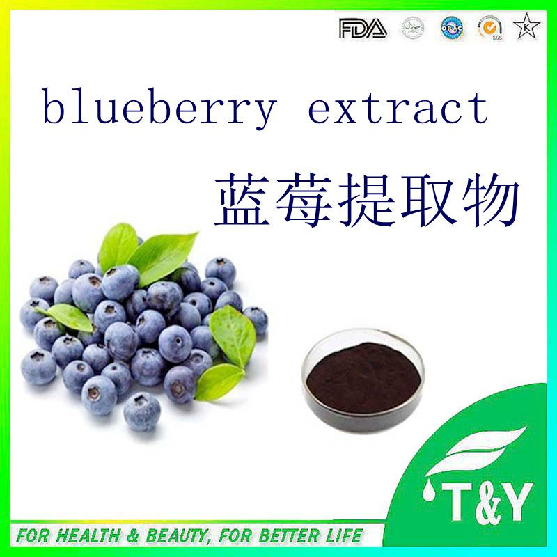 supply 100% pure high quality bilberry /cranberry/ blueberry extract for health and medical  800g/lot<br><br>Aliexpress