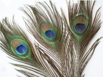 Top quality peacock feather,100pcs/lot, length: 25- 30 cm,beautiful natural peacock feather!