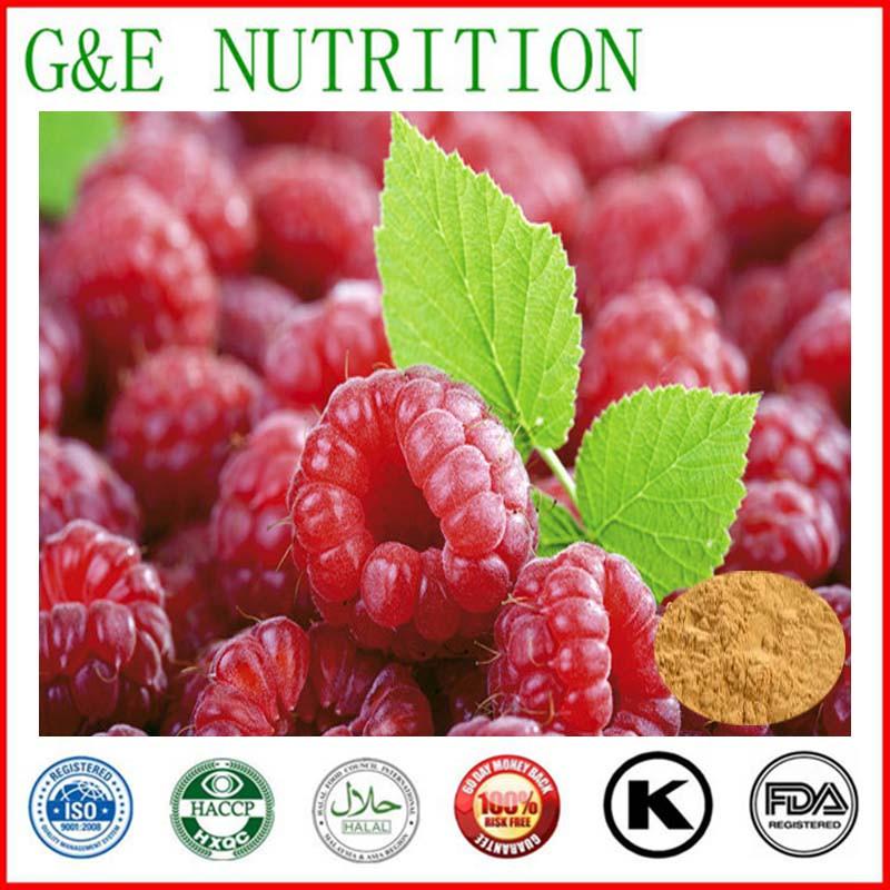 Fructus Rubi Extract/Raspberry Ketone/Rubi Fructus Extract   20:1  1000g