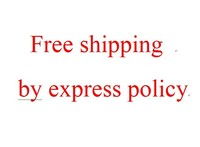 free shipping by express policy