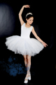 New professional dance chiffon swan lake ballet dance dress costumes adult petals ballet dress free shipping