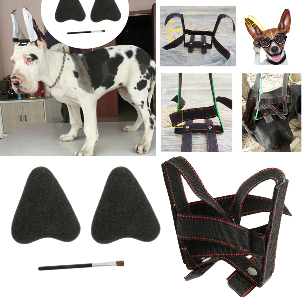 Dog Puppy Ear Care Standing Tool Suit For Samoyed, Great Dane Ear Correcting